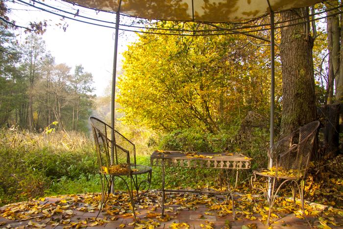 Herbstpavillon0.jpg