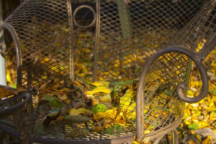 Herbstpavillon10.jpg