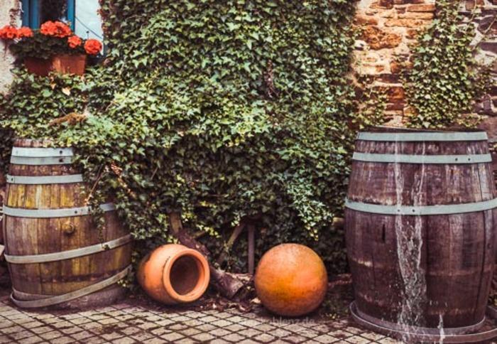 wilder_Wein_am_Haus_mit_Fässern_Vorschau-.jpg
