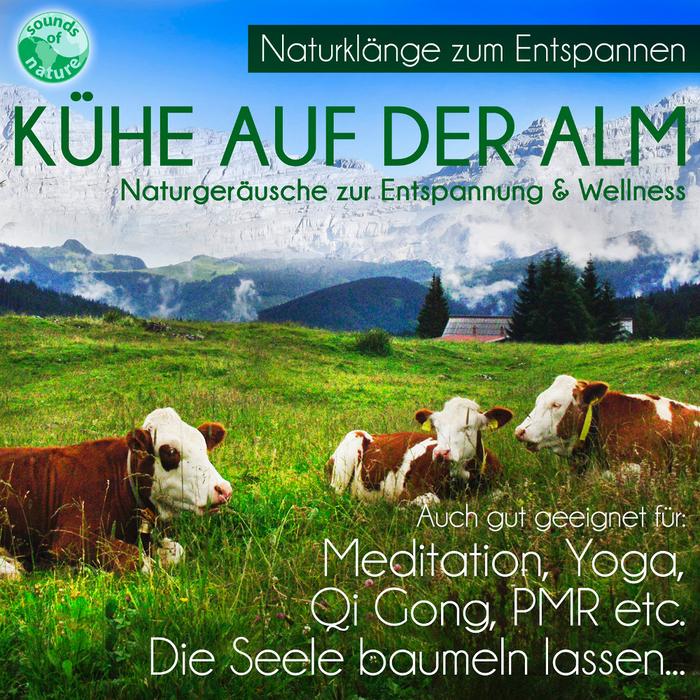 Kühe-auf-der-Alm-Kuhglockenkonzert-1000x1000.jpg