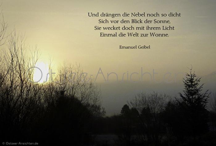 Nebel_Sonne_Geibel.jpg