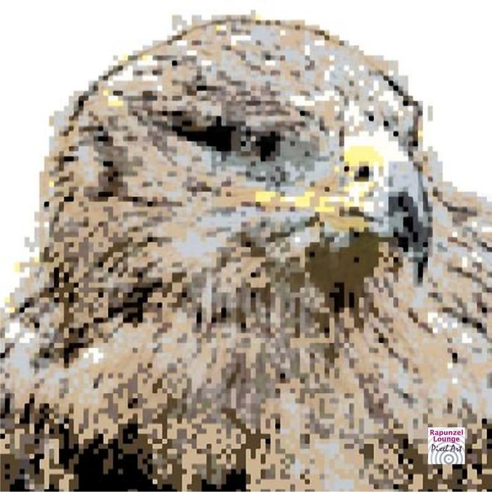 Adler_Pixel_Art.jpg