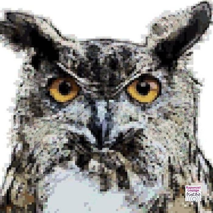 Eule_Farbblöcke_Pixel_Art.jpg