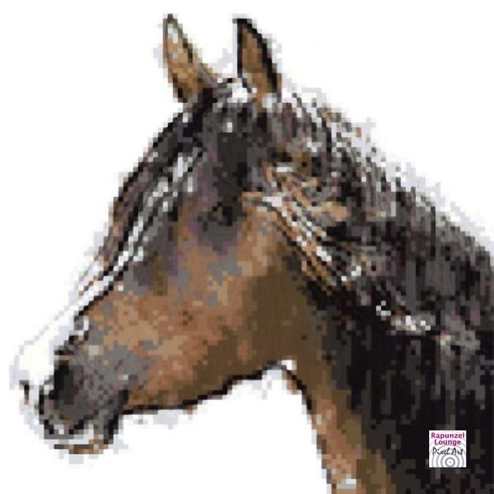 Pferd_Araber_Pixel_Art.jpg