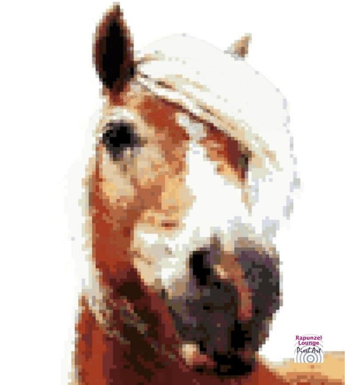 Pferd_Haflinger_Pixel_Art.jpg