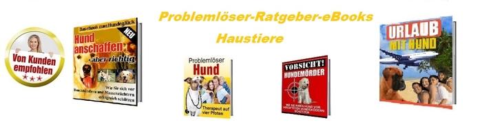 Probleloeser-Ratgeber-eBook.jpg