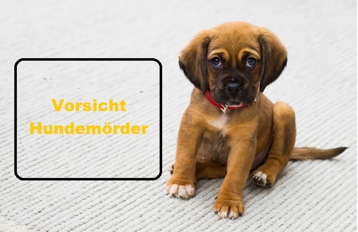 Vorsicht_Hundemoerder_neu.jpg