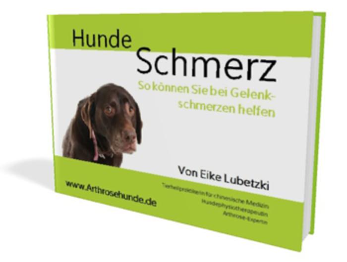 eBook_HundeSchmerz_350x265.png