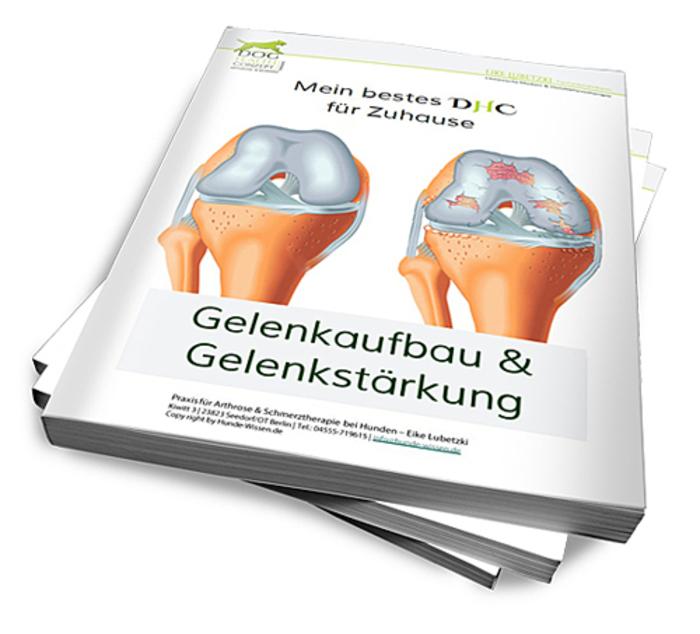 Magzinstapel_Gelenkpflege_500x453.png