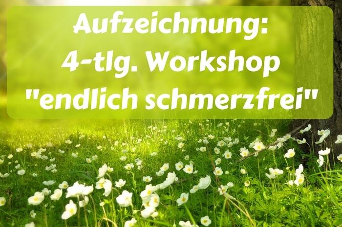 produkt_cover_elopage_4_tlg_Workshop_schmerzfrei.jpg