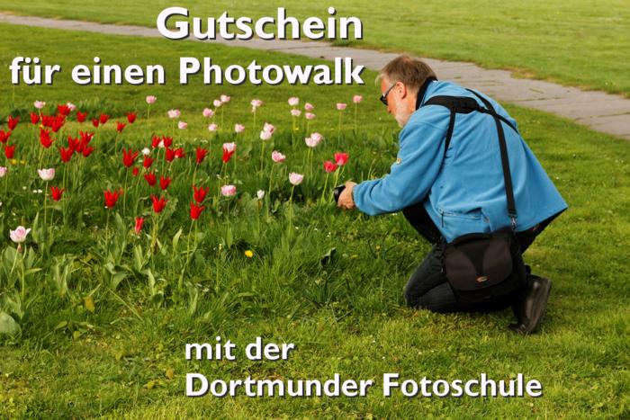 Photowalk_im_Gruenen.png