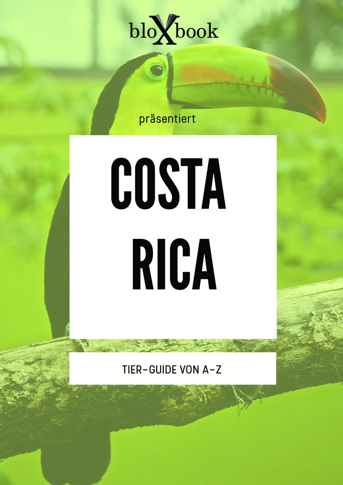 cover-costa-rica-tier-guide.jpg