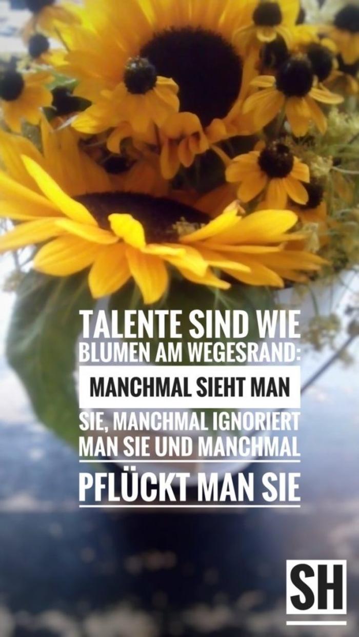 Talente-581x1030.jpg