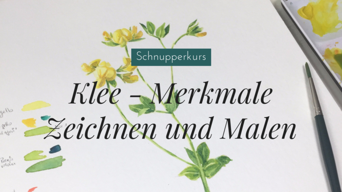 Schnuppermodul-Hornklee_(1).png