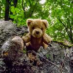 Teddyb%c3%a4ren seite 9