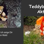 Teddyb%c3%a4ren einband