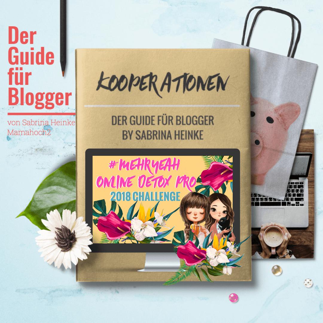 Ebook bloggerkooperationen